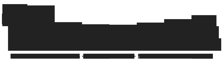 Toshido MMA